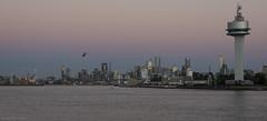 Melbourne city skyline at dusk on Australia Day 2014 (Ralph Green) Tags: australia melbourne victoria helicopter rialto eurekatower controltower cityskyline boltebridge yarrariver portofmelbourne melbournestar