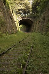 La Petite Centre (FilthCity) Tags: railroad paris abandoned train graffiti decay tracks urbanexploration tunnels urbex