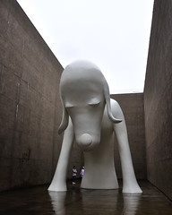 Aomoriinu-2 (kimtosh11) Tags: dog art rain japan nikon aomori 日本 犬 青森 雨 巨大 d5000