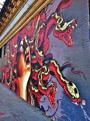 Medusa On Masonic (ArtFan70) Tags: sf sanfrancisco california ca usa art america mural unitedstates snake haightashbury medusa snakes mythology myth greekmythology lango greekmyth medusaonmasonic