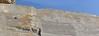 Persepolis site, Iran (philip_wgtn_nz) Tags: ruins iran persia archeology xerxes darius perspolis fars ataxerxes archaemenid