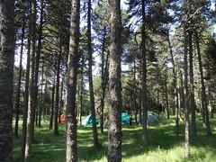 P7010103 (Club Pyrene) Tags: cerdanya estiu pirineos pirineus campaments pyrene campamentos colònies colòniesestiu