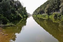 Lanca di Spessa Po (Flavio Calcagnini) Tags: trees italy lake water alberi reflections river lago italia fiume ponte po acqua riflessi lombardia pavia lanca spessa
