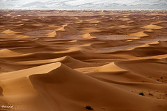 e il naufragar m'è dolce (_esse_) Tags: deserto desert mare sea onde waves sandwaves ondedisabbia landscape morocco marocco ergchegaga nonriescoanonvederciilmare