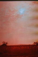 F1030033_lr (chi.ilpleut) Tags: kinmen taiwan island quemoy 2017 chinesenewyear lunar film expiredfilm kodakelitechrome100 iso100 crossprocessing 135mm 35mm analogue ilovefilms kodakfilm 底片 過期底片 柯達 記憶 蹤跡 金門鎏金之島kinmen 台灣 海島 島嶼 外島 回憶 走春 大晴天拍照天 晃晃 隨拍 我不在,就在去海邊的路上 海景 outing 冬陽 暖暖 暖陽 思念 漫步