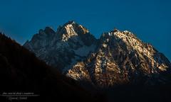 Sun Kissed! (Ashk81) Tags: mountain golden hour goldenhour incredibleindia hansling kumaonhimalayas himalayas peaks nomads himalayannomads peaklovers uttaranchal munsiyari