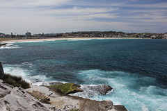 View back to Bondi (cathm2) Tags: australia nsw sydney bondi sculpture sculpturebythesea sea coast travel shore view scenery outdoors