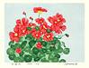 Garden nasturtium (Japanese Flower and Bird Art) Tags: flower garden nasturtium tropaeolum majus tsuneo yamamoto modern woodblock print japan japanese art readercollection