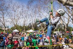 Community Arbor Day Festival 2017 (CANOPY PHOTOS) Tags: arborday arbordayfestival paloalto californiaarborweek mitchellpark trees community treeclimbing