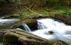 DSC_9313 (Luella Maria) Tags: falls waterfalls decew