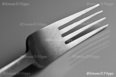 Denti (sifone) Tags: bw stilllife white black fork bn forchetta bianconero posate