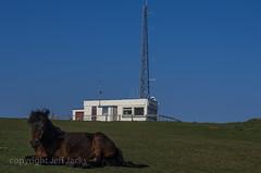 IMGP2631.jpg (screwdriver222) Tags: england tower cornwall pentax unitedkingdom lookout rame coastwatch k5 ramehead dartmoorpony ramepeninsula da1855alwrf3556