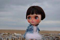 Truda enjoying the sea air