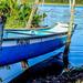 "Canoa de pesca artesanal. • <a style=""font-size:0.8em;"" href=""http://www.flickr.com/photos/39546249@N07/9235935916/"" target=""_blank"">View on Flickr</a>"