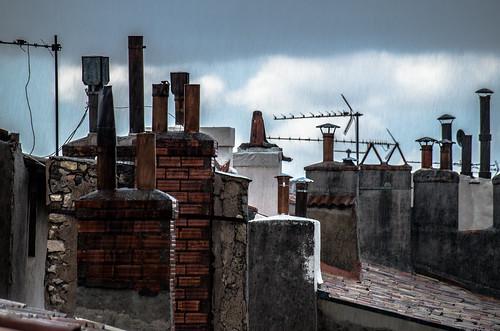 roofy's rain