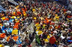 India - West Bengal - Kolkata - Mallick Ghat Flower Market - 6 (asienman) Tags: india kolkata calcutta westbengal asienmanphotography