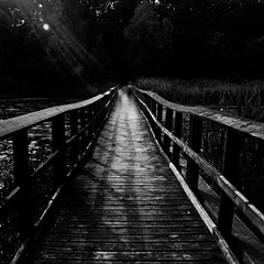 Boardwalk (Paul Turgeon) Tags: life lighting longexposure blackandwhite landscape solitude lakeerie fineart simplicity passion contemplation tranquilscene zenlike paulturgeon