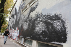photoset: PUBER over ROA (1060, Schadekgasse)
