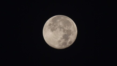 Video of the Harvest Moon
