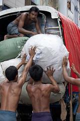 MM020 Young workers - Yangon (VesperTokyo) Tags: man men truck back muscle yangon burma myanmar porter burmese seminude youngman loading halfnaked rangoon manualworker nikond3 myanmarese