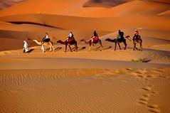 Caravana. (Victoria.....a secas.) Tags: sand desert dunes arena desierto marruecos dunas caravana ergchebbi