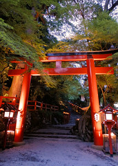 (CiccioNutella) Tags: tree nature japan kyoto shrine lantern torii kibune