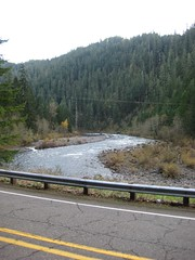Looking back towards Lazy Bend (Tysasi) Tags: permanent brevet 200k clackamasriver lazybend