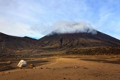 Mount Doom from South Crater (Emily Miller Kauai) Tags: newzealand volcano crossing hike mount alpine doom northisland tongariro ngauruhoe southcrater