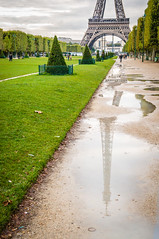 Eiffel Tower Puddles