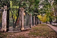 Real Jardín Botánico de Madrid (Francisco Esteve Herrero) Tags: madrid botanico hdr jardinbotanico jardínbotánico botánico 2013 franciscoesteveherrero