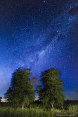 """""""Twins"""" (Brandon Curtis Giesbrecht) Tags: light canon painting way twins long exposure nightscape kitlens paisaje astrophotography paraguay 1855mm chaco milky palosanto t3i"""
