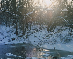 (Amy Fleming) Tags: trees winter sun snow cold film water forest 35mm photography amy 35mmfilm fleming amyflemingphotography