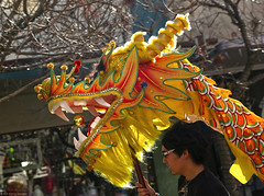 Asian Pacific Lunar New Year Festival 2014 01.25.14 2 (Marcie Gonzalez) Tags: china california county ca new city usa motion yellow festival japan america festive asian japanese us movement colorful downtown dragon riverside pacific head events united year north chinese festivals parades dragons calif parade celebration southern event socal cal empire states inland lunar 2014 so