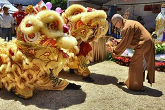 Offerings to the Lion Dancers
