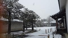 拍到自己的手(≧∇≦) (miya33) Tags: 京都 雪 京都車站 京都駅 元離宮 ニ条城 flickrandroidapp:filter=none