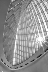 Calatrava Sunburst Monochrome (gmolzahn) Tags: digitaldarkroom sonya77 silverefexpro2 sigmadiagonalfisheye