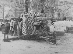 "Camouflaged German 88-mm gun • <a style=""font-size:0.8em;"" href=""http://www.flickr.com/photos/81723459@N04/13657975445/"" target=""_blank"">View on Flickr</a>"