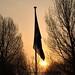 Weidumerhout - Frisian Flag