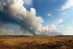 Yellowstone National Park On Fire - Wyoming (Andrea Moscato) Tags: park blue sky parco usa green nature grass america landscape fire us view unitedstates natural smoke natura national cielo vista np paesaggio statiuniti naturale andreamoscato
