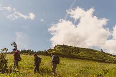 (AngelaRiggs) Tags: portland wildflower columbiarivergorge tommccallpreserve