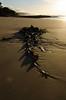Sea grass (Guille Barbat) Tags: nature australia victoria panoramic greatoceanroad seagrass lorne ladscapes loutitbay guillebarbat