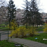 Small central park in block 23 Residence, New Belgrade, Belgrade, Serbia, March 2016. thumbnail