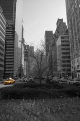 Yellow Cab (13Photos11) Tags: ny ferien newyork vereinigtestaaten städtereise amerika urlaub osterurlaub parkavenue reise nyc newyorkcity usa osterferien vereinigtestaatenvonamerika