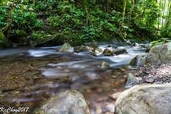 Downstream from Mahua waterfall (kcchoy60) Tags: tambunan mahuawaterfall clear coldwater mountainwater stream runningwater rocks sonya7 sabah 2017