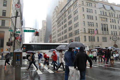 Rainy 5th Avenue