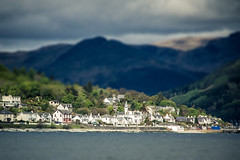 Tilt Shift (Daisy Swain) Tags: houses sea summer seascape west water sunshine ferry landscape scotland clyde village hills gourock dunoon tiltshift 18135mm canon60d argylllandbute