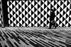 (0rlando Ferreira) Tags: street blackandwhite bw portugal monochrome mono streetphotography pb porto nocrop pretoebranco fotografiaderua ricohgrdiv