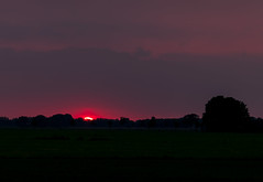 Too Late to Say (Arjan Grendelman) Tags: sunset red sky sun tree landscape lyrics nederland canonef135mm2l