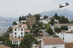 View from the top of Comares
