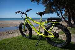 Stretch Lime-O (ibikenz) Tags: bike bicycle auckland ebike electricbike fatbike rx100 pedego sonycybershotdscrx100 trailtracker